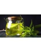 Semillas medicinales marihuana  con alto CBD del banco Dinafem