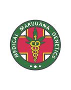 Medical Marijuana variedades de cannabis medicinal con alto CBD